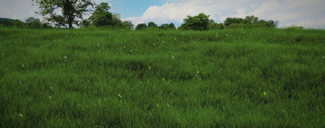 Animation de pelouse 3D réalisé avec le logiciel Blender - ABzH Prod - Animation 3D photoréaliste - Infographiste 3D